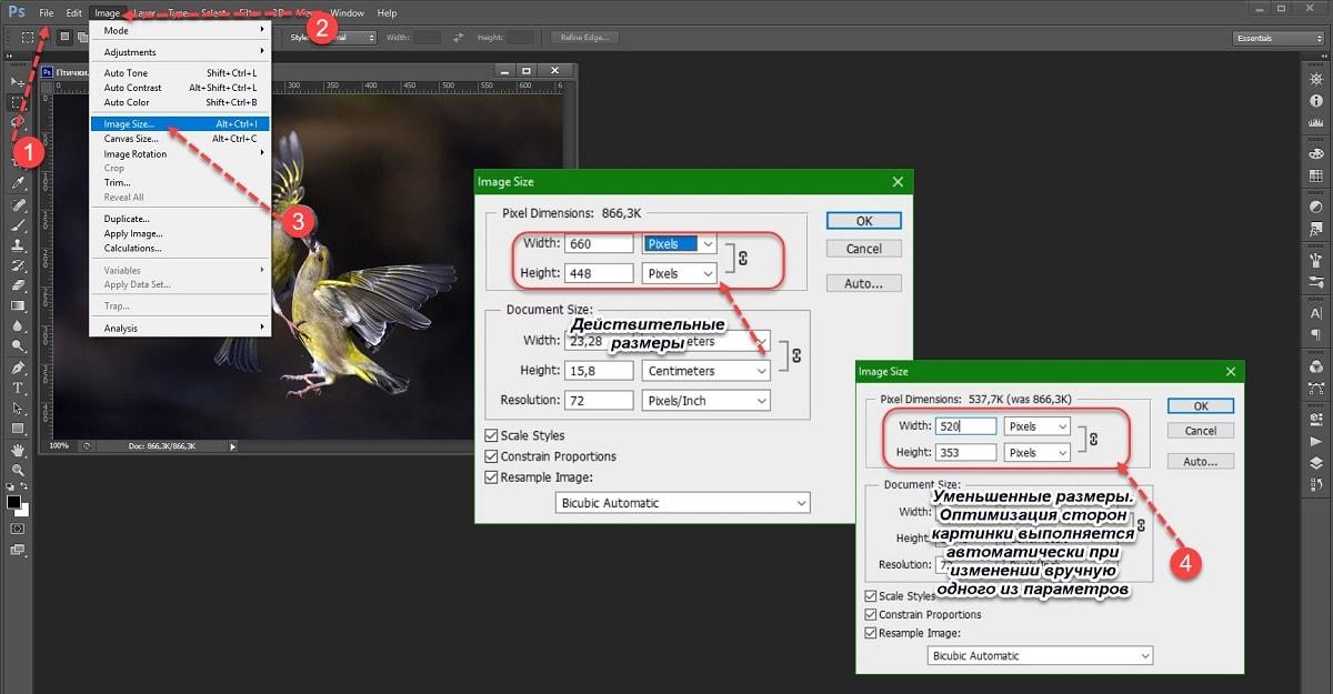 Оптимизация изображений для сайта | 625x1200